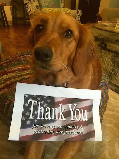 BRADI BEAR: THANK A VETERAN